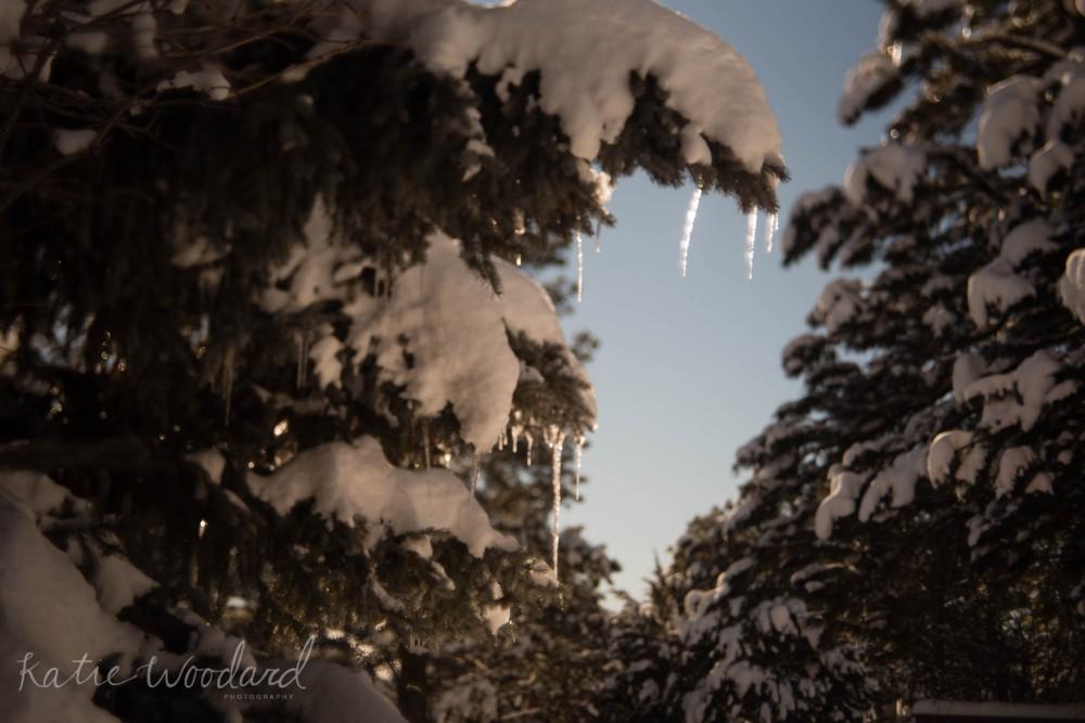 89 icicles web-1